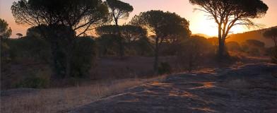 La Plaine des Maures au couchant, photographiée par Emmanuel Boiter.