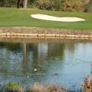 Lac du trou n°4 et ses canards