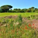 Vidauban parcours golf