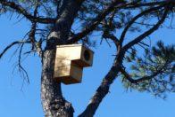 Abri pour oiseaux